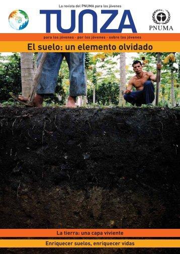 El suelo: un elemento olvidado - UNEP