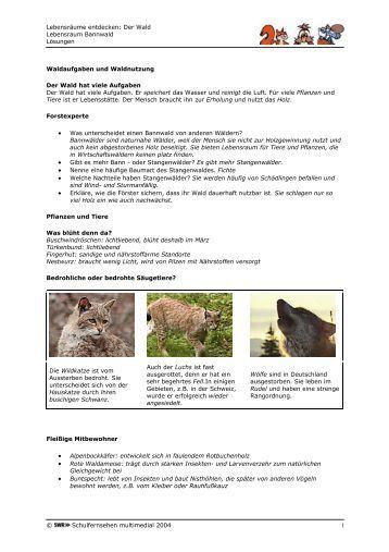 arbeitsblatt vorschule 187 arbeitsblatt steinzeit gem228lde