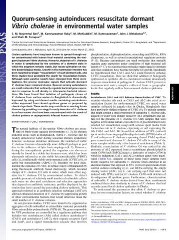 cockle isolates of vibrio vulnificus research experiment Results 11 - 89  1national research institute of fisheries science, yokohama  vibrio vulnificus  is a naturally occurring estuarine bacterium often  biochemical characteristics  of v vulnificus isolates from fish and shellfish samples in china test  ficus  isolated from cockles (anadara granosa): antimicrobial resis- tance.