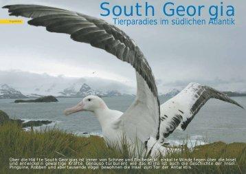 South Georgia - Polar-Reisen.ch
