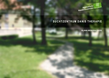 Suchtzentrum Danis Therapie