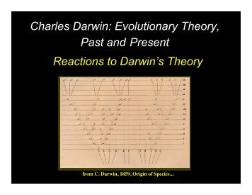 an introduction to the evolutionary theory by darwin charles Theory of evolution essay  charles darwin and mode in talk  growing up to the theory or evolutionary fraud from piltdown,.