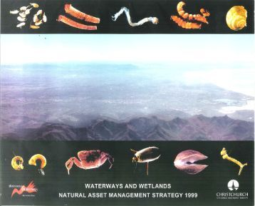Nz biodiversity strategy