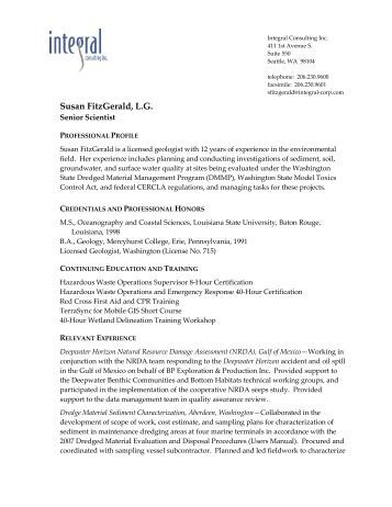 sales consultant resume sample elite resume writing