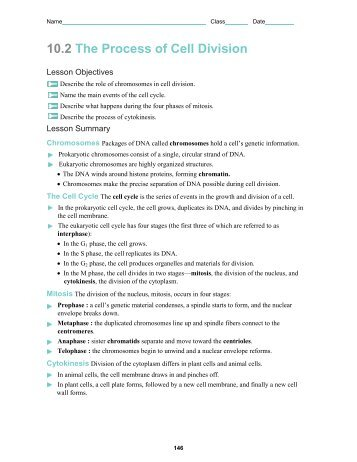 cell growth and division worksheet - Termolak