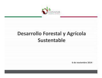 jorge-rescala--desarrollo-forestal-agricola-sustentable