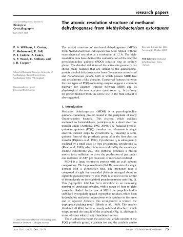 University of texas san antonio application essay
