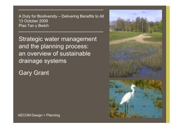 Strategic water management and the planning process: an overview ...