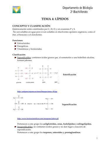 tema 4. los lipidos - Biología El Valle