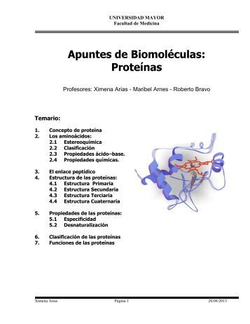 Apuntes Proteinas Kine 2013 - Profesora Maribel Arnes