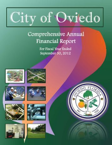 analysis of comprehensive annual financial report