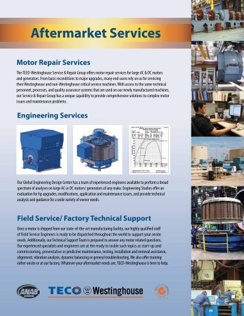 Services Capabilities - TECO-Westinghouse Motor Company