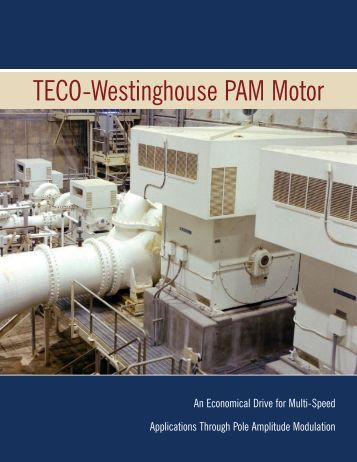 PAM Motor Brochure - TECO-Westinghouse Motor Company