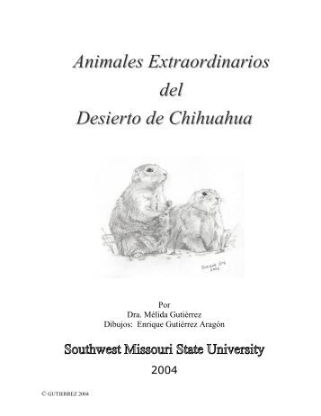 Animales Extraordinarios del Desierto de Chihuahua
