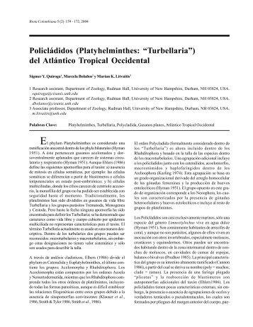Descargar este fichero PDF - Instituto de Investigación de Recursos ...