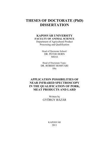 Doctor Dissertation