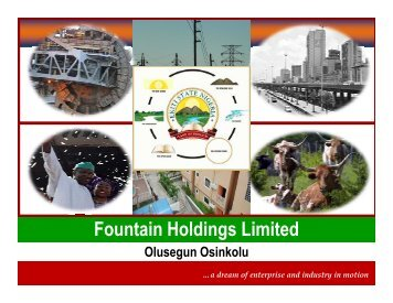 Fountain Holdings Limited - NigerianMuse