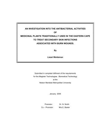 an investigation into the antibacterial activities of medicinal plants ...