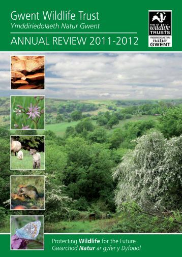 cheetah annual report Get sec filings for cheetah mobile inc (cmcm), including annual report (10k) and quarterly report (10q.
