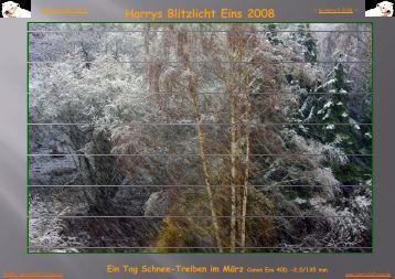 0000 Blitzlicht Eins 2008-03 N - HarrysInFocus