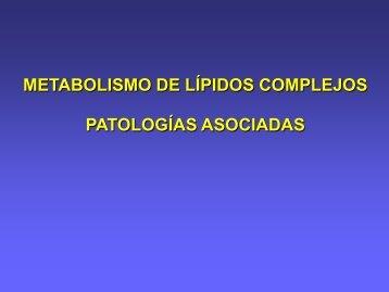 Formato PDF - FMV