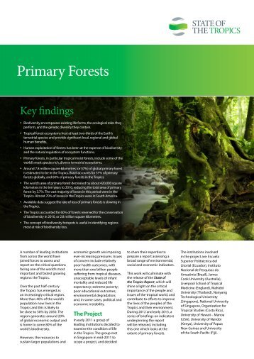 Primary-Forests_English2
