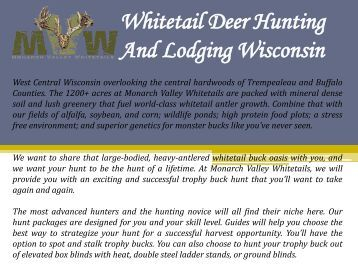 Whitetail Deer Hunting And Lodging Wisconsin