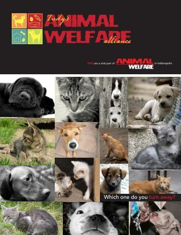 download the Indianapolis Animal Welfare Alliance Executive ...
