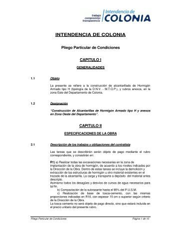 Pliego - Intendencia de Colonia
