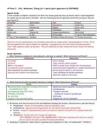 ap biology exam review guide answers