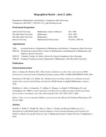 Professional Curriculum Vitae Editing For Hire For Masters