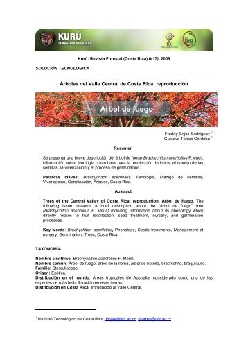 Árbol de fuego - TEC Digital - Tecnológico de Costa Rica