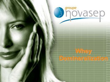 Whey Demineralization: Various Process Options According to Plant