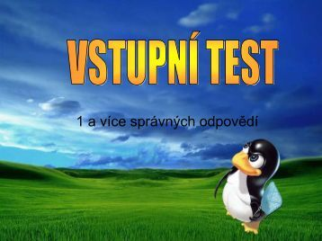 VSTUPNÍ TEST