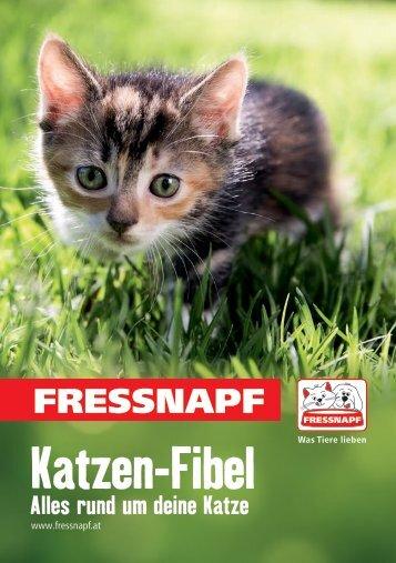 Katzen-Fibel