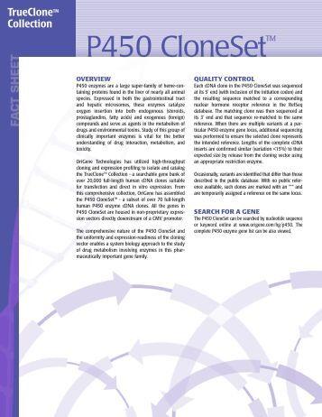pdf the postmortem brain in psychiatric