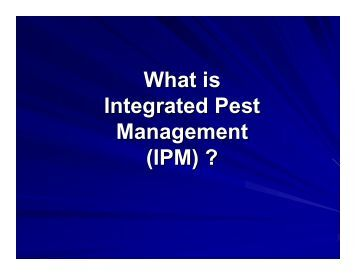 integrated pest management in cassava cereals Detail about the invasive species, larger grain borer  known to cause maize  yield losses of us$91 million per annum in tanzania and cassava yield  an  important part of the integrated pest management system for dealing with the  beetle.