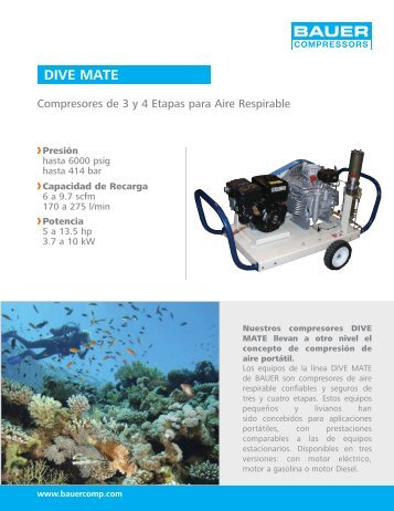 Dive Mate Flyer ESP TIRA - Sudamerica Spiro Fire