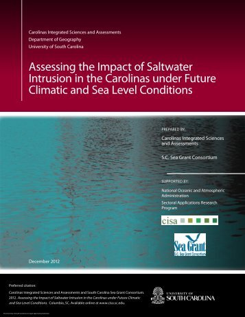 Assessing the Impact of Saltwater Intrusion in the Carolinas under ...