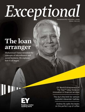EY-exceptional-january-june-2015-emeia