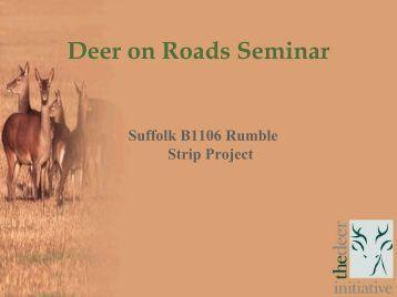Deer on Roads Seminar - deer collisions project