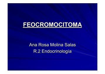 FEOCROMOCITOMA - EXTRANET - Hospital Universitario Cruces