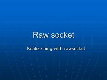 Raw socket