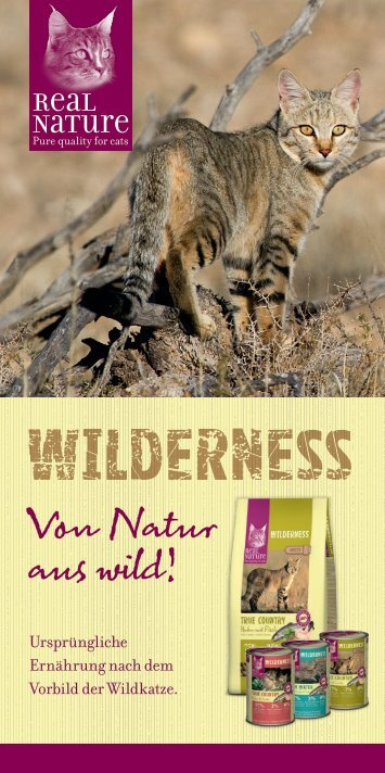 Real Nature Wilderness Katze