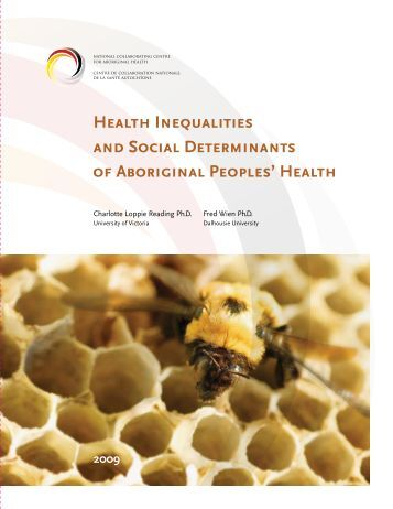 the inequalities surrounding indigenous health What follows is meant to provoke a greater understanding and more conversation  around the many barriers to health that indigenous people.