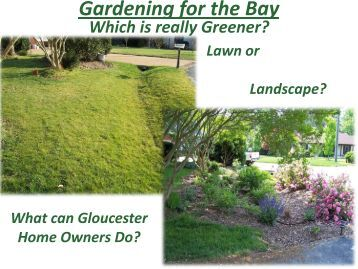 Rain Gardens - Gloucester County Virginia