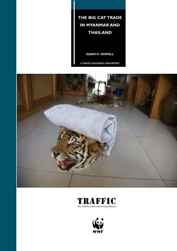 THE BIG CAT TRADE IN MYANMAR AND THAILAND - Naturschutz.ch