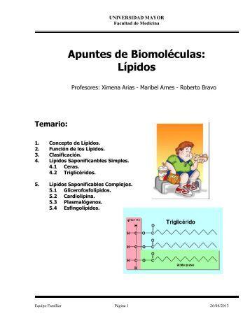 Apuntes Lipidos Bioq Enf 2013 - Profesora Maribel Arnes