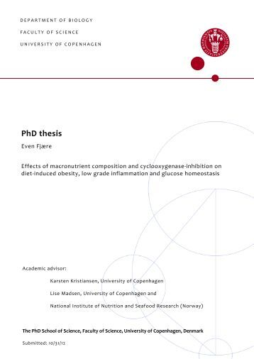 write phd thesis computer science Computer Science MS PhD Programs Michigan Technological University Write a PhD  thesis perfectionist
