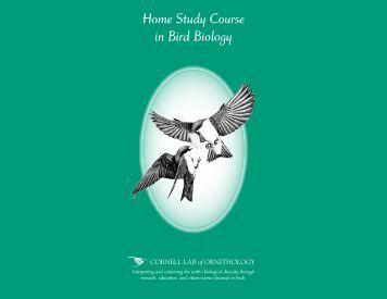 Ornithology: Comprehensive Bird Biology | Bird Academy ...